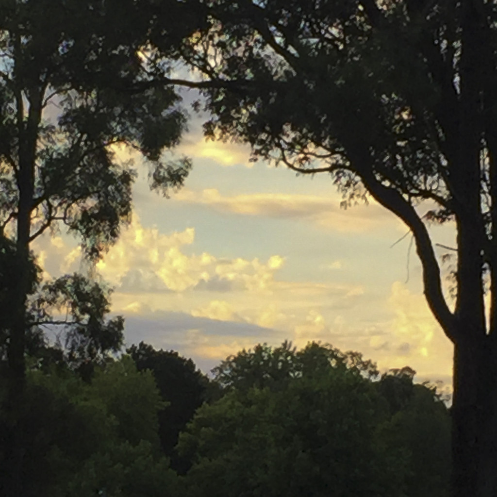 dwellingup sunset