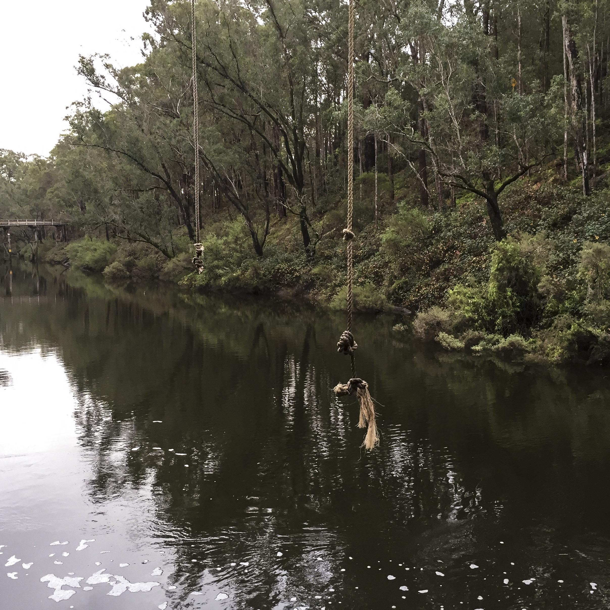 quiet and still in winter at Dwellingup