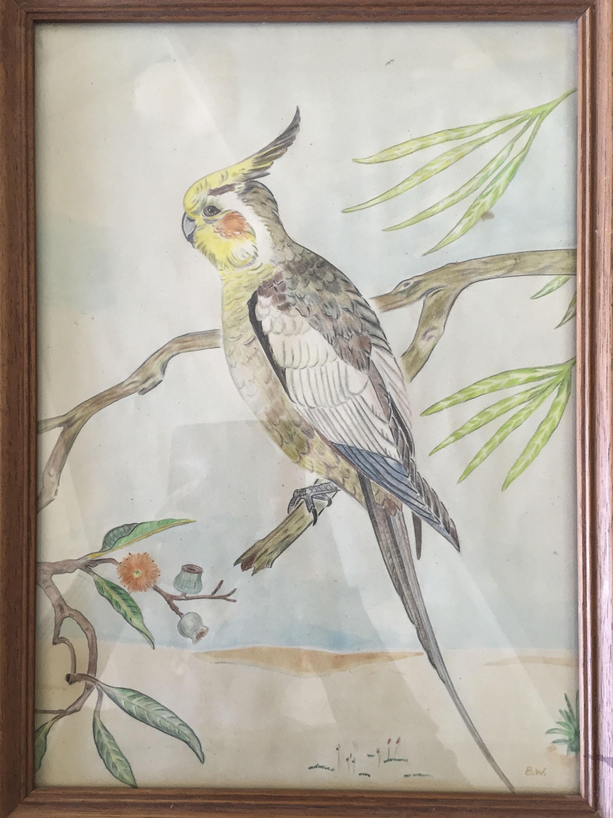mum's bird