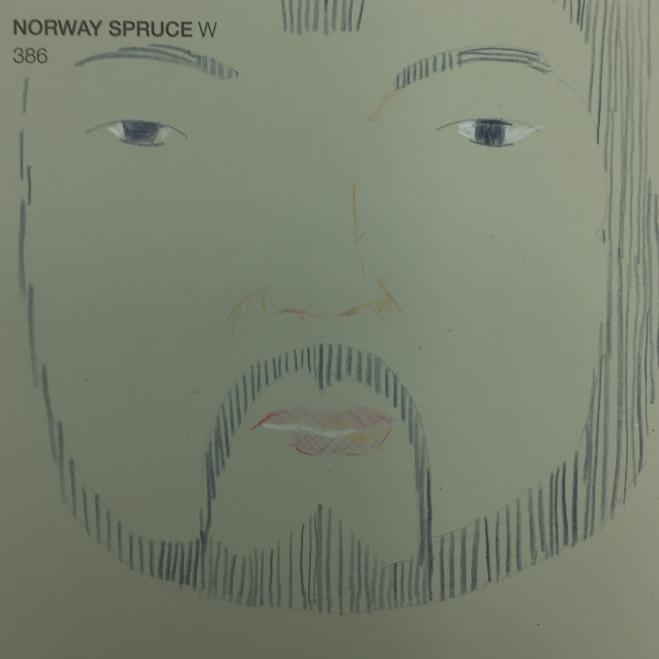 mongolian facial hair - pencil on paint chip
