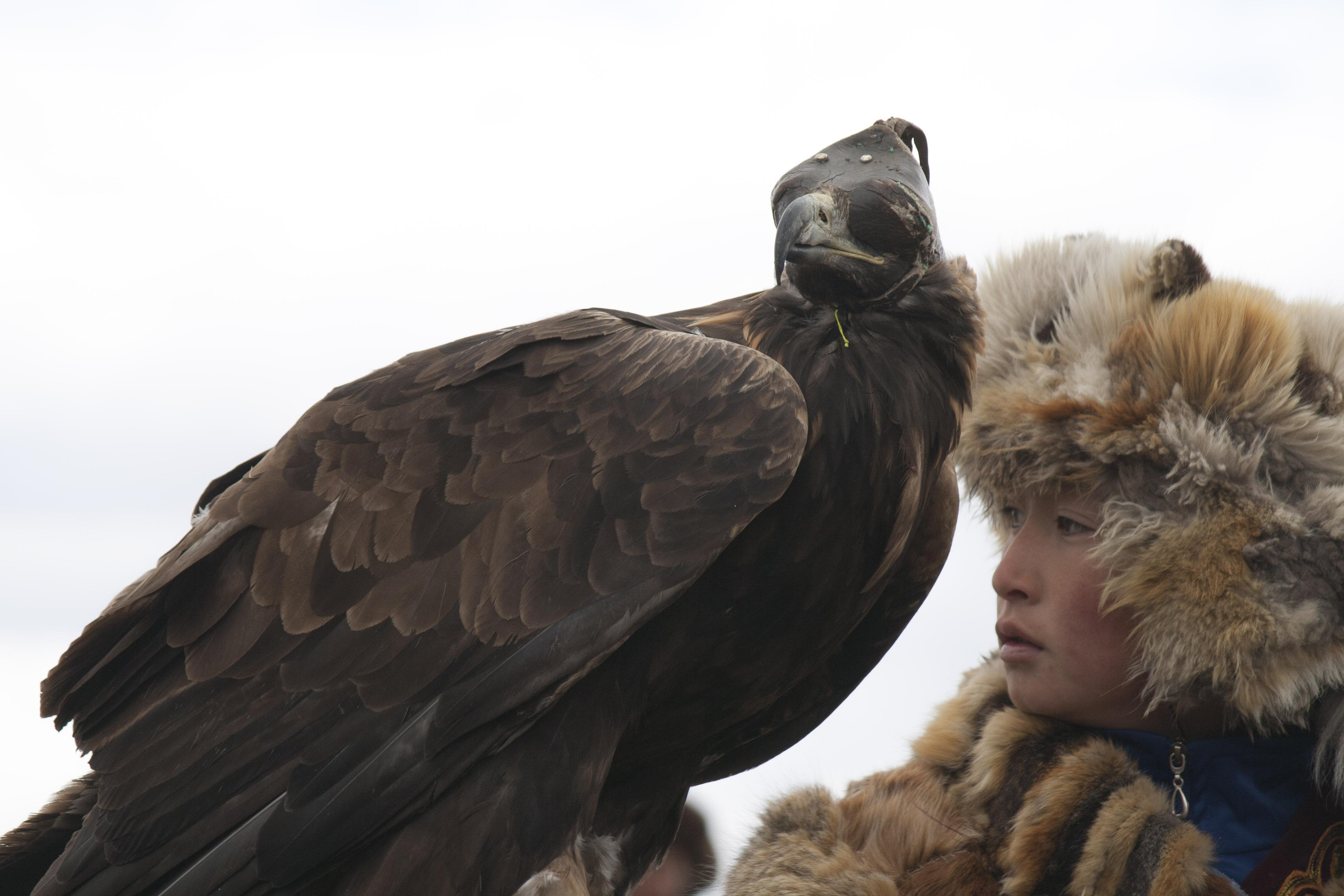 altai-eagle-festival-8